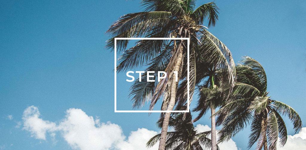 Abbildung von Palmen mit Beschriftung Step 1